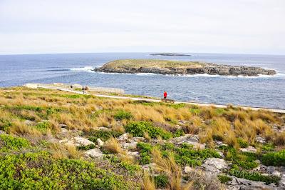 袋鼠島Flinders Chase National Park