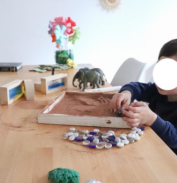 bac sensoriel elephant