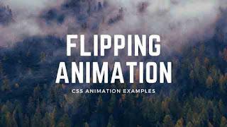 css 3d flip effect