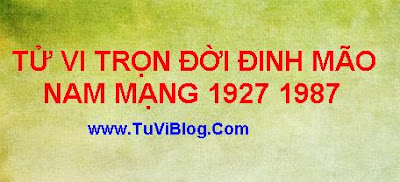 Xem tu vi tron doi Dinh Mao 1987