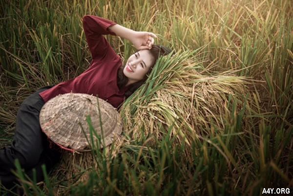 cô thôn nữ xinh đẹp bên ruộng lúa
