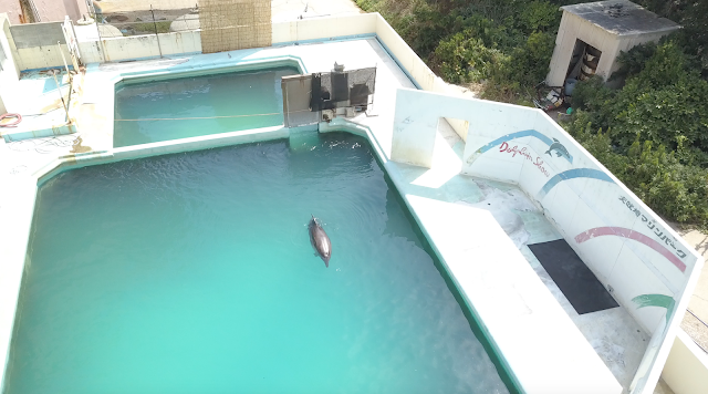 Inubosaki Marine Park Aquarium