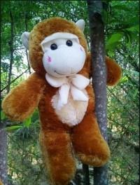 Monkeyman Sang Pembasmi Kejahatan