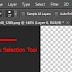 วิธีเพิ่มหรือลด Selection ใน Photoshop ด้วย Quick Selection Tool