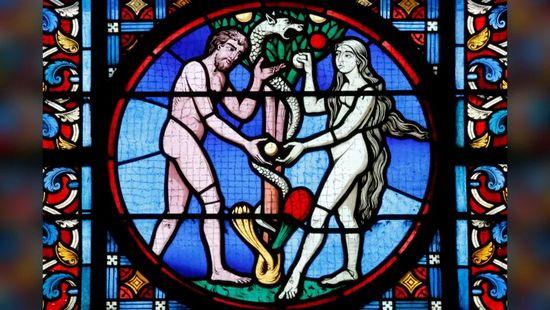 vetrata di Adamo ed Eva