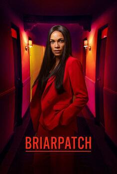 Briarpatch 1ª Temporada Torrent – WEB-DL 720p/1080p Legendado