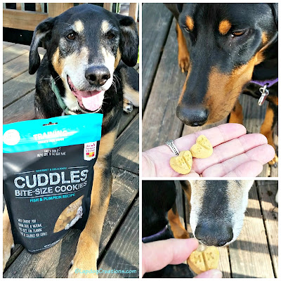 the honest kitchen cuddles dog treats