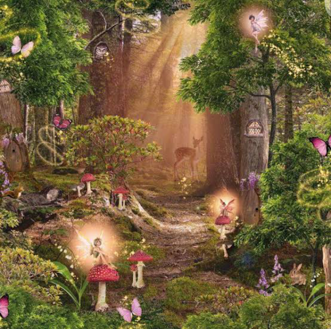 I BELIEVE IN FAIRIES:THE FAIRIES OF ARDEN