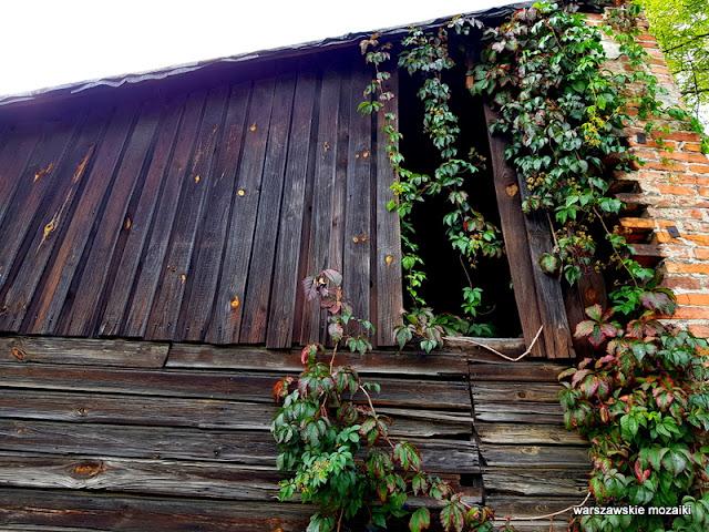 Warszawa Warsaw Targówek Fabryczny drewniak dom drewniany uliczka architektura architecture