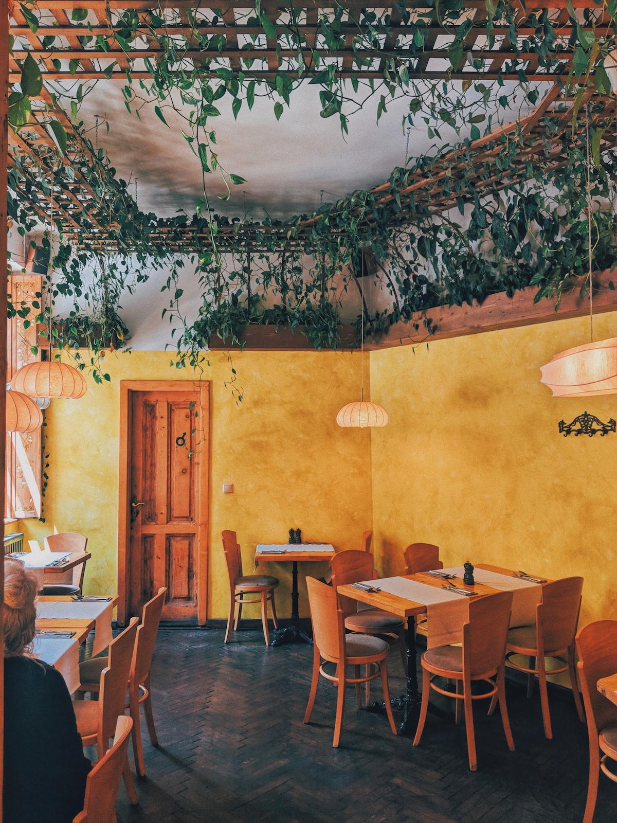 Samsara Food House, Cluj-Napoca