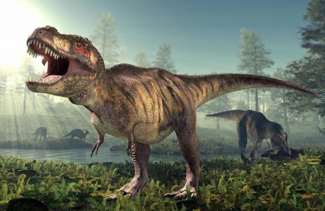 Tyrannosaurus rex ADN