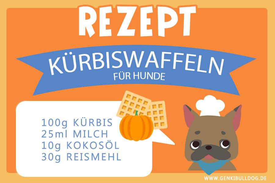 Rezept: Kürbiswaffeln für Hunde Hundekuchen Hundeleckerli Hundekekse backen DIY Rezept selbstgemacht