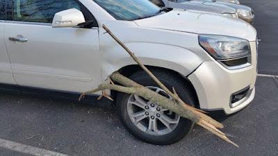 τι προκάλεσε ένα κλαδί δένδρου σε ένα SUV
