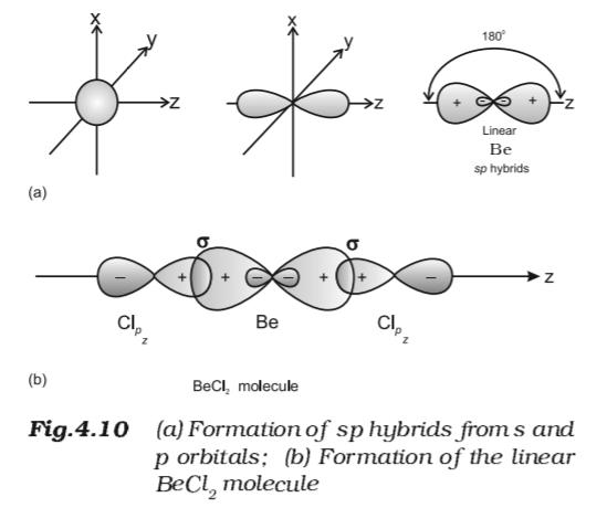 Sp Hybridisaatio