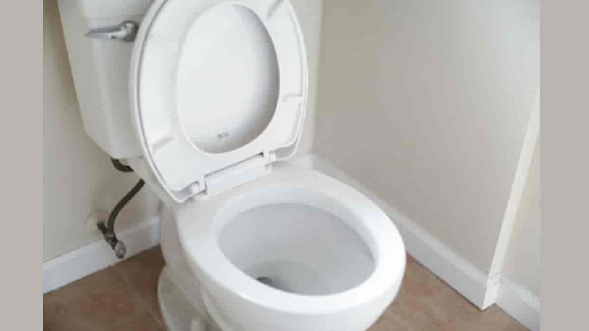 Lentidão no vaso sanitário