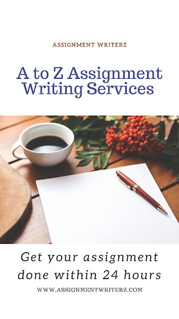 assignment writer india