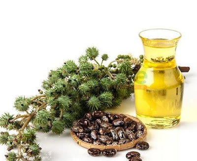 Demand for Castor Oil gone Down Drastically