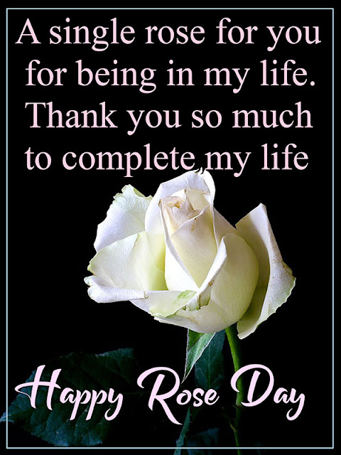 rose day quotes image