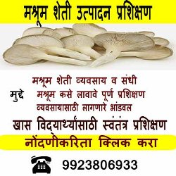 Mushroom training batch student special
