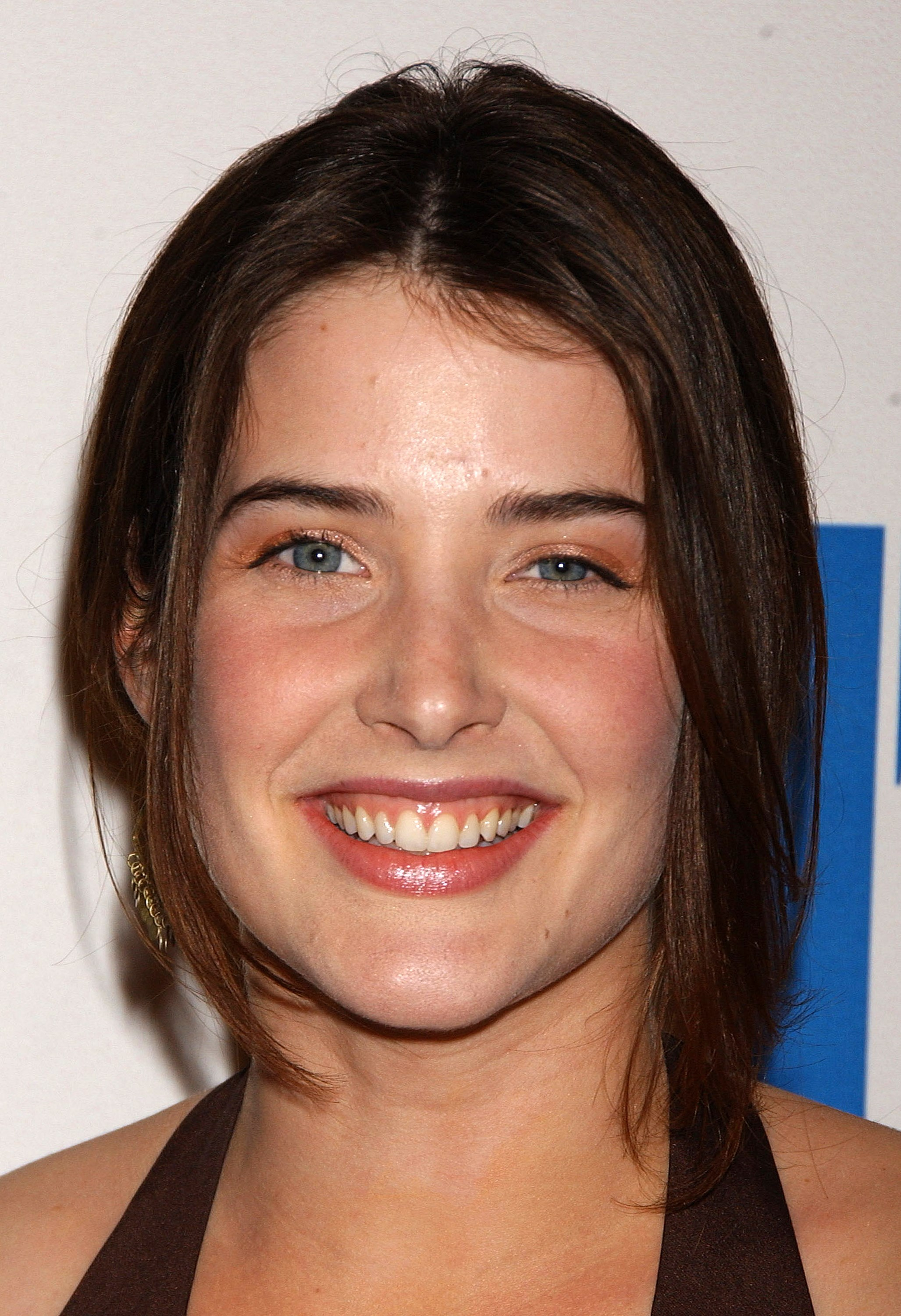 Cobie Smulders Pictures Gallery 47  Film Actresses