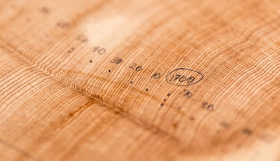 tree rings and climate change