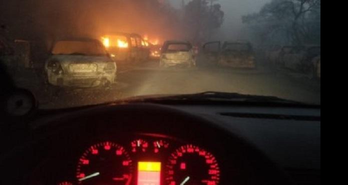 Έλληνας γεωπόνος: Γιατί η φωτιά πέρασε από τη Λ. Μαραθώνος και εξελίχθηκε σε «φονιά»