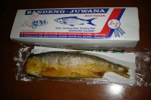 Rasa Bandeng Juwana Oleh-Oleh Khas Semarang