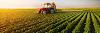 Urban Farming - A popular and Eco-Friendly Alternative