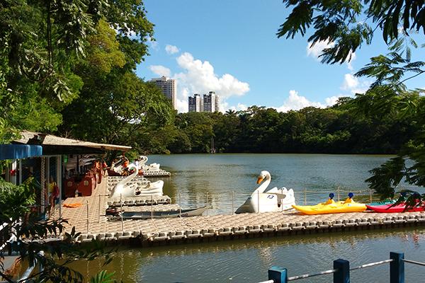 Parque do Ingá, em Maringá. Café com Jornalista