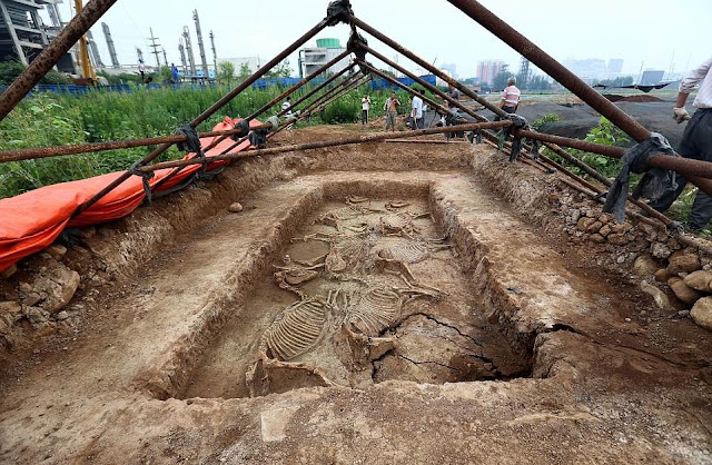 2,700-year-old royal tomb complex with horse burials discovered in central China's Henan Province