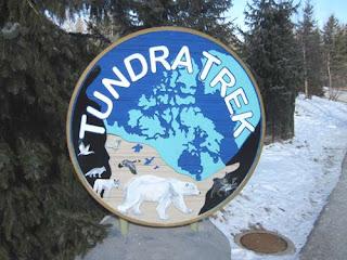 Tundra Trek