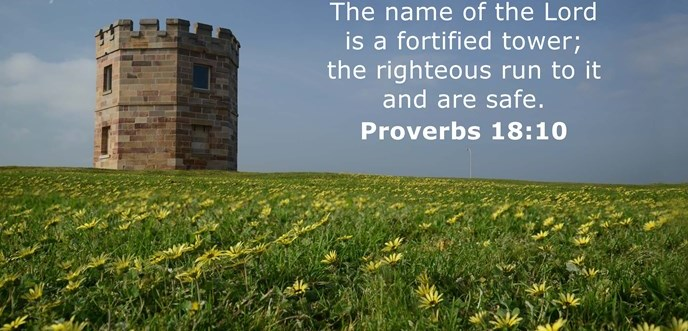 The name of the Lord is a fortified tower; the righteous run to it and are safe.