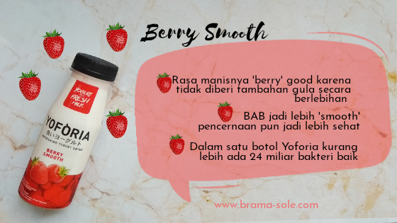 Yoforia Berry Smooth