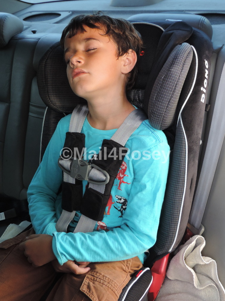 Mail4Rosey: The Diono Radian RXT is THE Best Car Seat I Have Ever Owned!