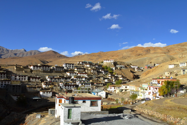 Kibber - the land of yaks, horses and snow leopards
