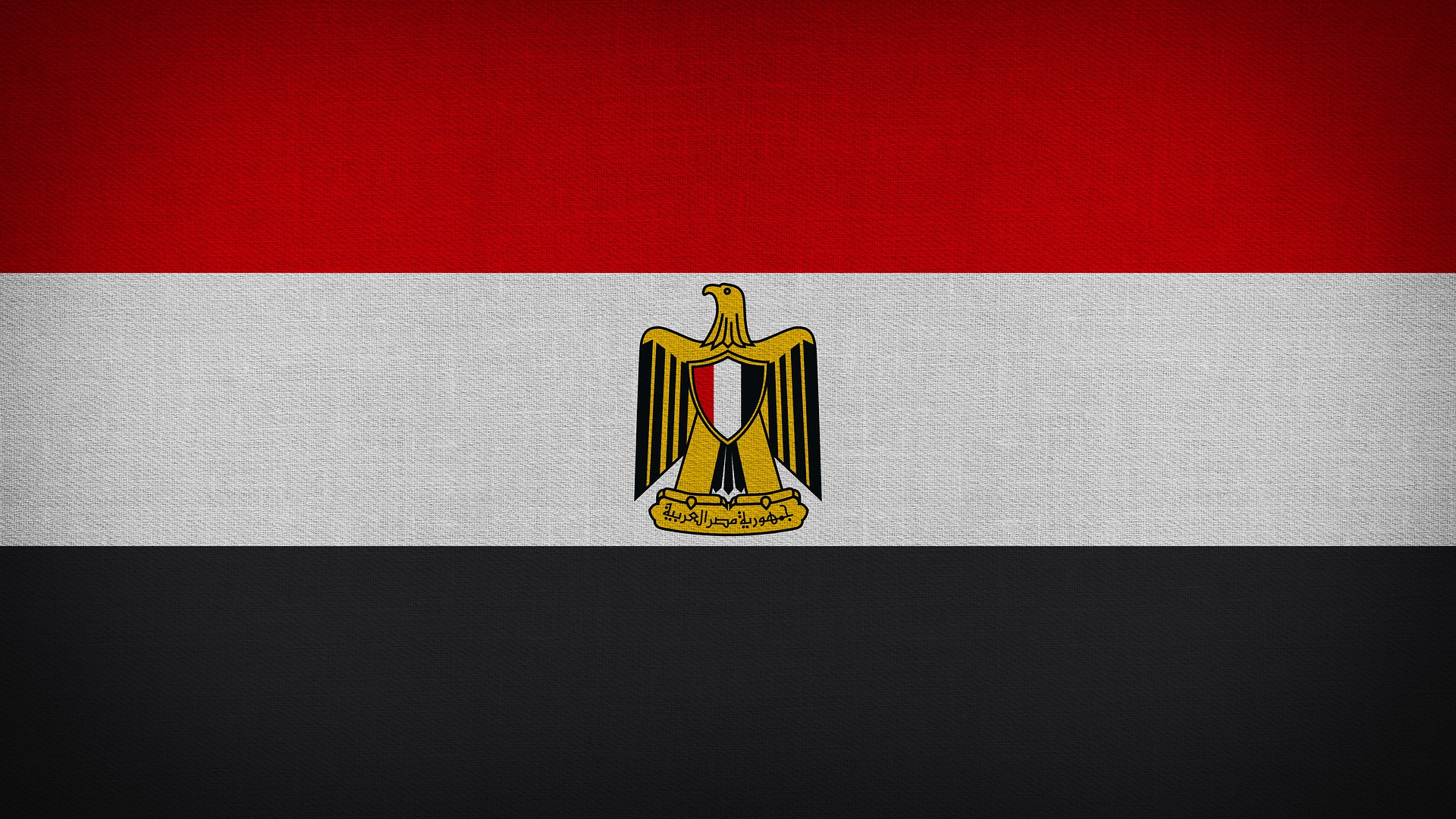 تحركات مصر نحو غزة.. دعم مادي وحشد دولي