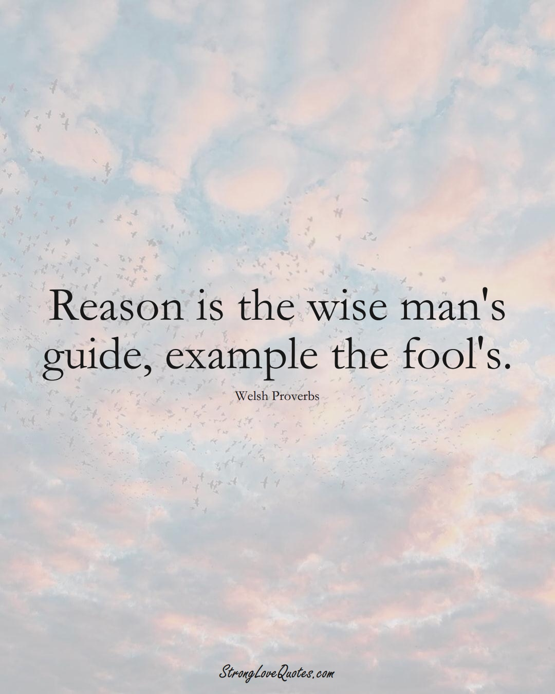 Reason is the wise man's guide, example the fool's. (Welsh Sayings);  #EuropeanSayings