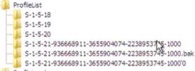 Error en el servicio de perfil de usuario