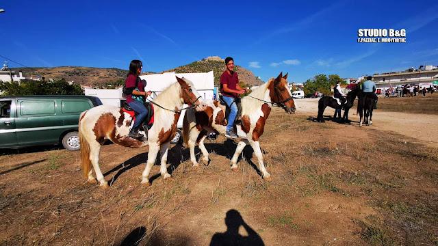 """Λατρεία για τα άλογα στο Άργος - Με επιτυχία η """"17η Ιππική Συνάντηση Διομήδεια 2019"""" (βίντεο)"""