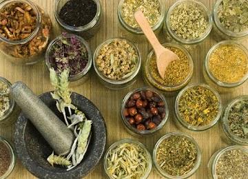 Remédios caseiros para problemas digestivos, gripe e alívio do estresse