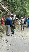 Kesigapan Babinsa Sertu Isman dalam Bantu Bersihkan Material Pohon Tumbang