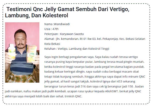 Apakah Benar Jelly Gamat QnC Bisa Untuk Semua Penyakit ...