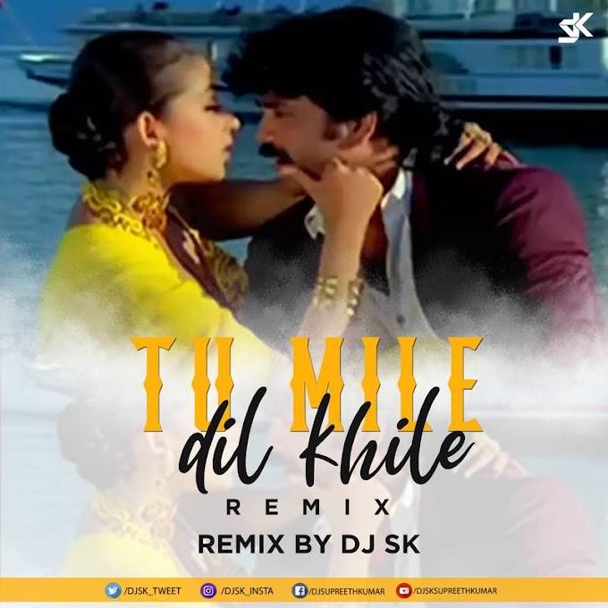Tum Mile Dil Khile (Remix) - DJ SK