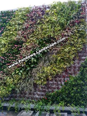 Jasa vrtical garden surabaya