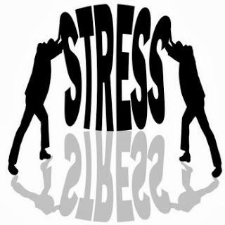 http://manfaatnyasehat.blogspot.com/2014/02/makanan-sehat-untuk-menghilangkan-stres.html