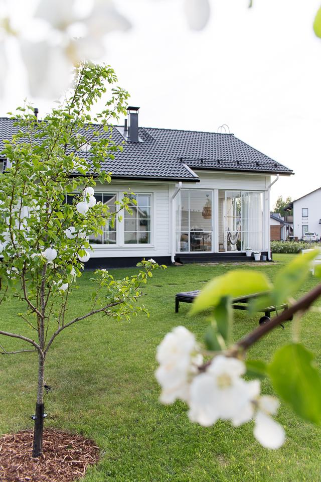 villa h, puutarha, piha & puutarha, omenapuu, päärynäpuu, lasitettu terassi
