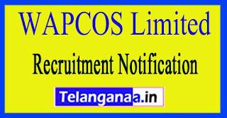 WAPCOS Limited Recruitment Notification 2017