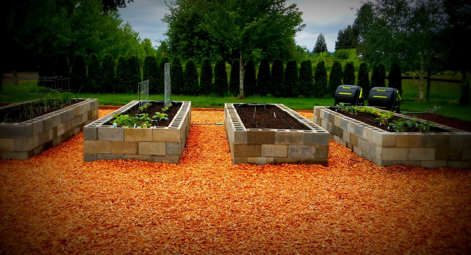 Raised vegetable gardens myideasbedroom com