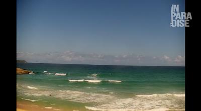 praia mole florianopolis ao vivo
