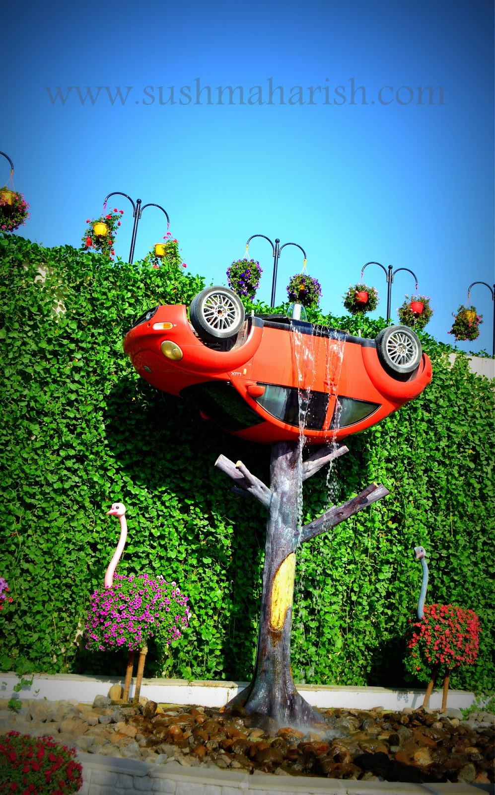 Exploring Beyond The Skyscrapers. Largest Flower Garden Of The World - Miracle Garden Dubai. 29